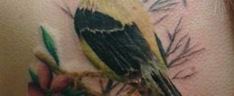 WW_Matt_Kozlowski_tattoos_18